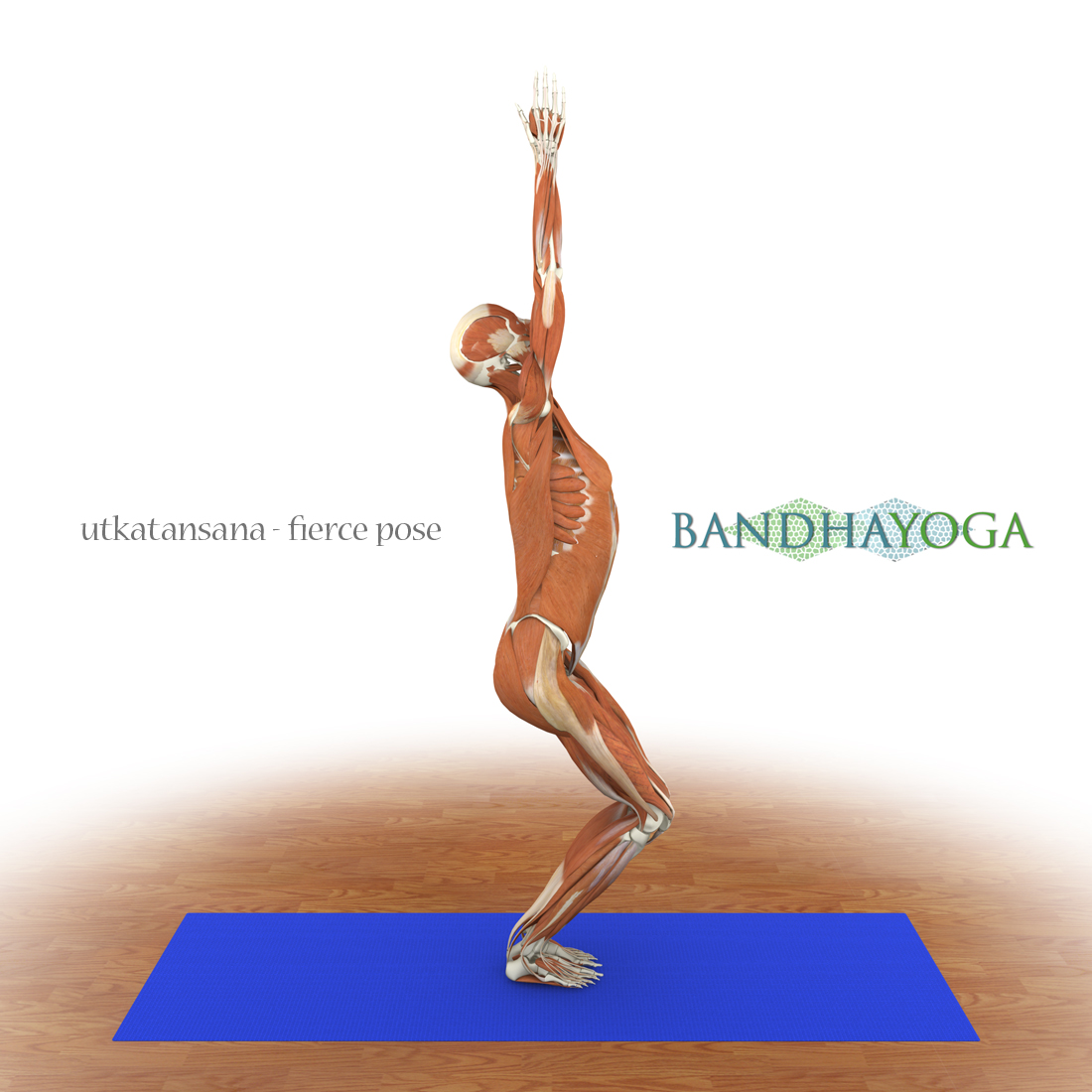 Yoga: Injury Prevtion for runners